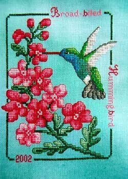 Broad-Billed Hummingbird 2002 - Cross Stitch Pattern