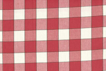"Red Buffalo Check 16"" x 36"" Toweling Fabric"