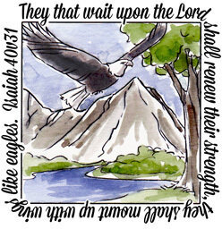 Eagles Window - Clear Stamps