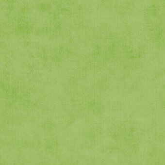 Riley Blake Cotton Shade Turtle Green Fabric - Fat Quarter