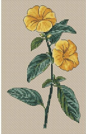 Linum Trigynum Flowers - Cross Stitch Kit