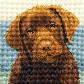 Hot Chocolate Lab - Cross Stitch Kit