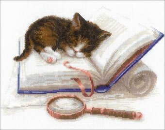 Kitten On The Booklet - Cross Stitch Kit