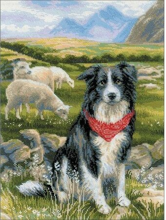 Border Collie - Cross Stitch Kit
