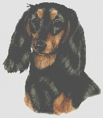 Black and Tan Longhaired Dachshund - Cross Stitch Pattern