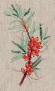 Sea Buckthorn Sprig - Cross Stitch Kit