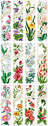Birthday Bookmarks - Cross Stitch Pattern