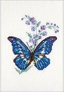 Polemonium and Butterfly - Cross Stitch Kit