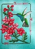 Broad-Billed Hummingbird 2002