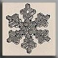 Medium Snowflake - Crystal