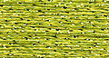 Rainbow Gallery Petite Treasure Braid - PB83 Wild Lime